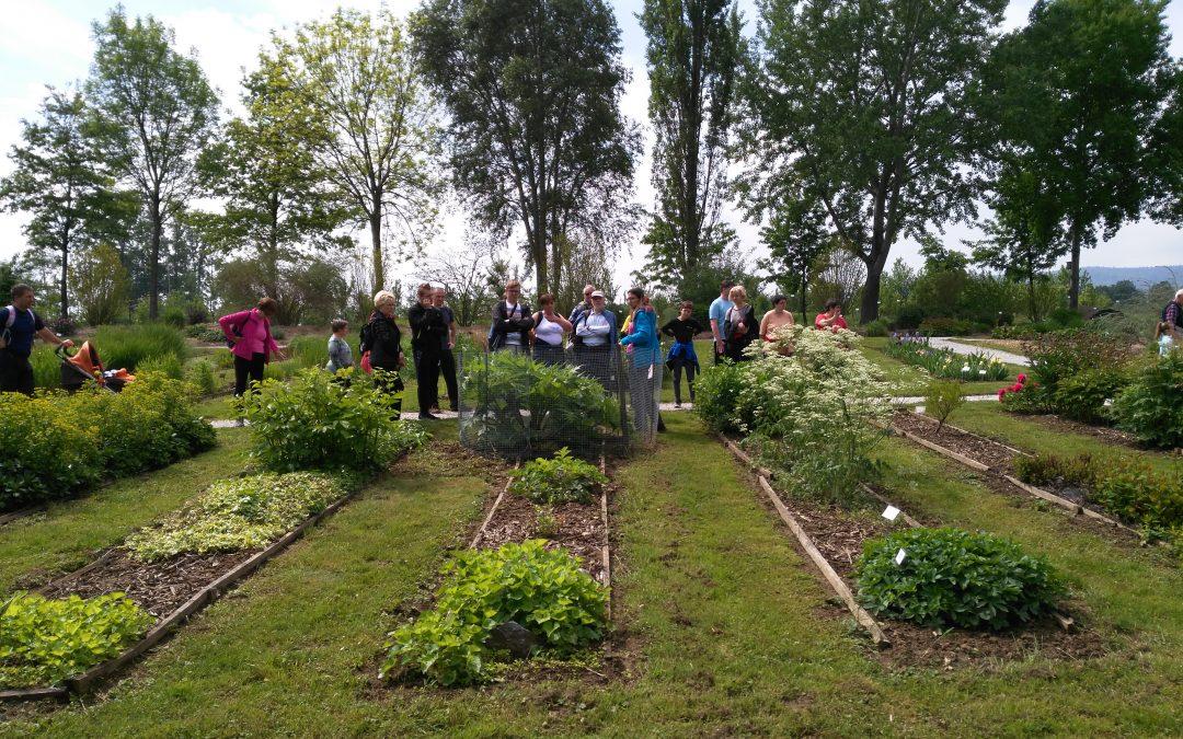 Botanični vrt Pivola – inkluzivni sprehod